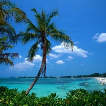 bahamas 11